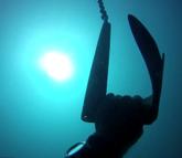 Marbella Août 2012, profondeur 35m